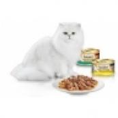 Консервы для котов и кошек