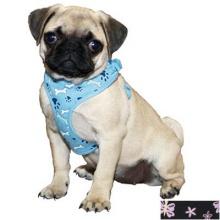 Lit'l Pals Soft Mesh мягкая шлея для собак