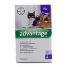 Адвантейдж 80 средство против эктопаразитов для кошек и кроликов, пипетка