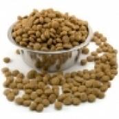 Сухие корма для котов и кошек