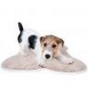Спальные места для собак