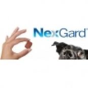 Таблетки от клещей и блох NexGard