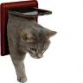 Дверцы для котов и кошек