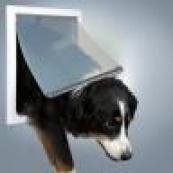 Двери для собак