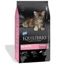 Equilibrio Kitten (Эквилибрио Киттен)